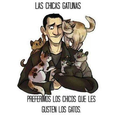 CHICAS Y GATOS