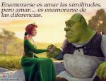 Enamorarse es amar las similitudes y las diferencias